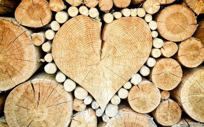 Drewno twardzielowe zalety